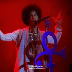 Prince @ Zénith, Paris show n° 1 , June 01 2014 (4)