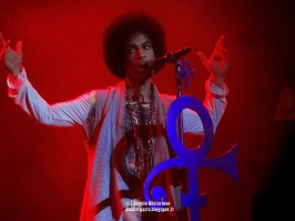Prince @ Zénith, Paris show n° 1 , June 01 2014 (4)