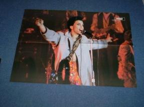 Prince1986livearmsspread54cmx40cm