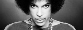 Blog-TEMPLATE-Prince-1024x379
